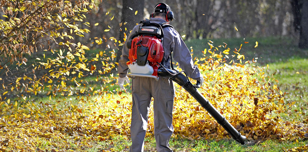 Living in leaf blower's hell